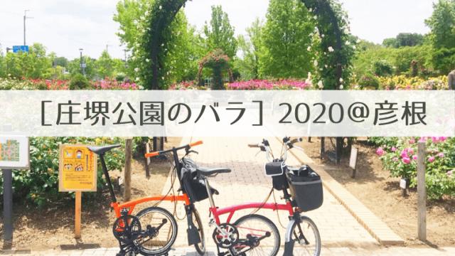 庄堺公園のバラ2020 タイトル