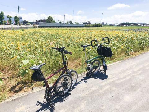 あいとうマーガレットステーション ひまわり自転車