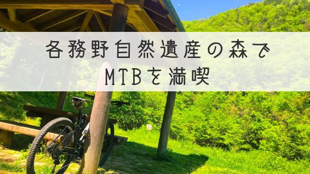 各務野自然遺産の森でMTBを満喫
